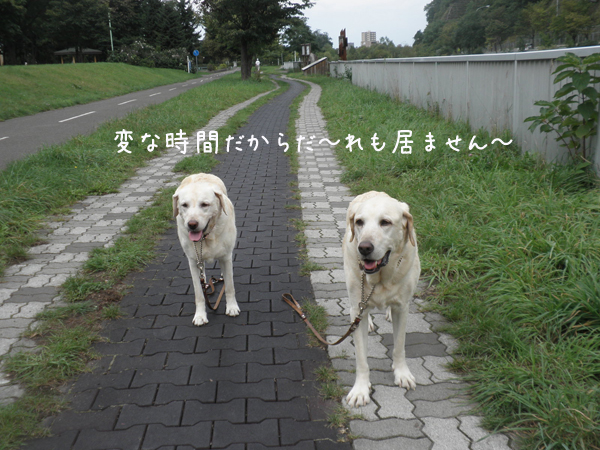 sanpo1_20120924195404.jpg