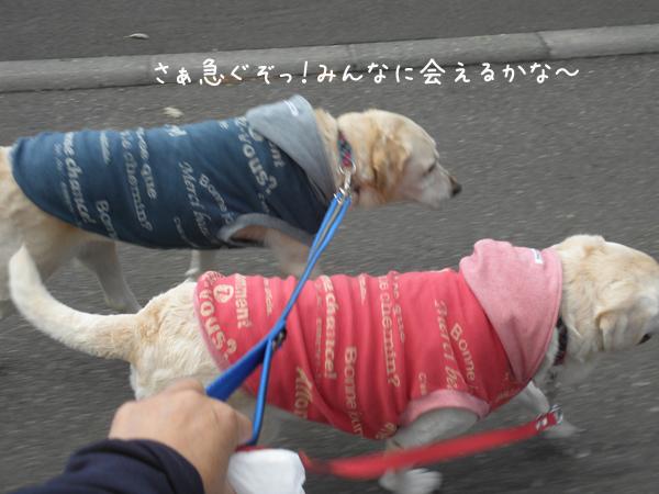 sanpo1_20121015213417.jpg