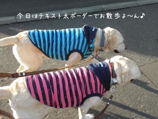 sanpo1_20121024224245.jpg