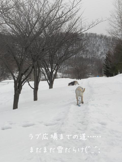 sanpo1_20130325232331.jpg