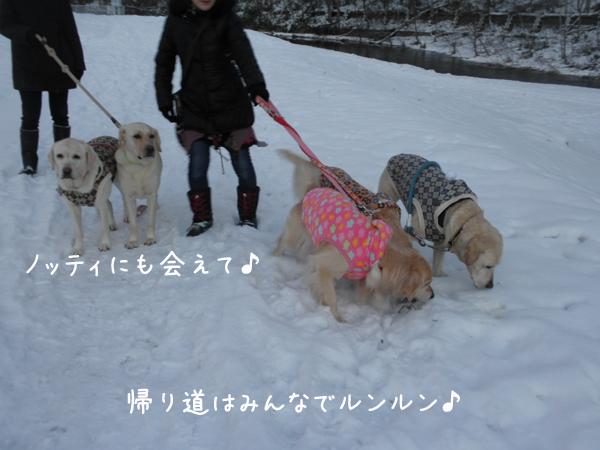 sanpo4_20121201182738.jpg