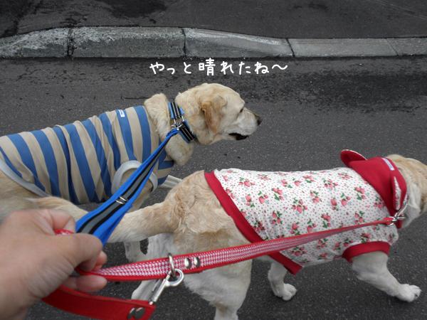 sanpo_20120506001039.jpg