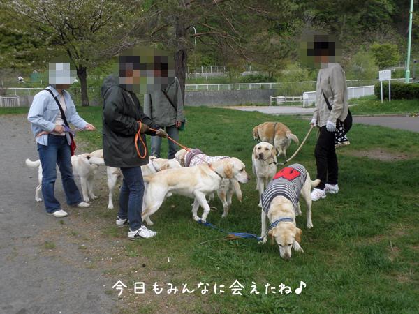 sanpo_20120518220328.jpg