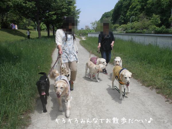 sanpo_20120530204402.jpg
