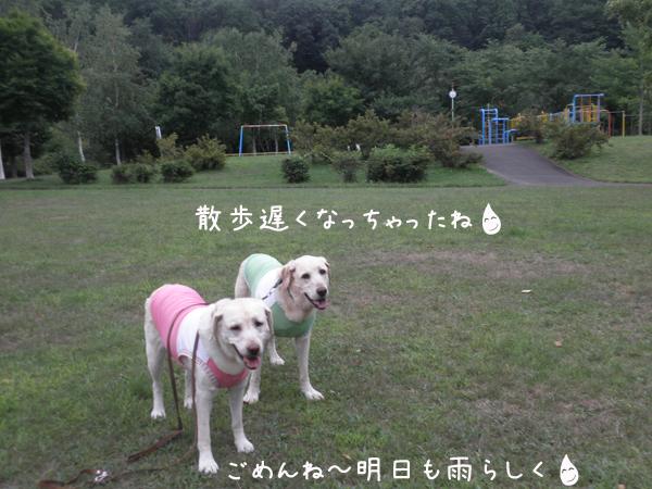 sanpo_20120815205458.jpg