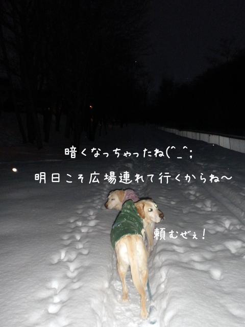 sanpo_20130109205530.jpg