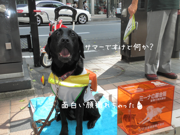 summer_20120915195951.jpg