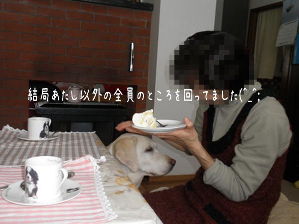 syeri3_20121219222147.jpg