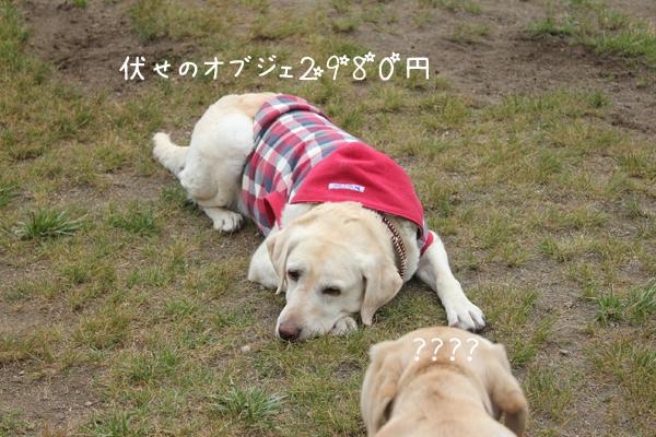 syerineru_20120621215858.jpg