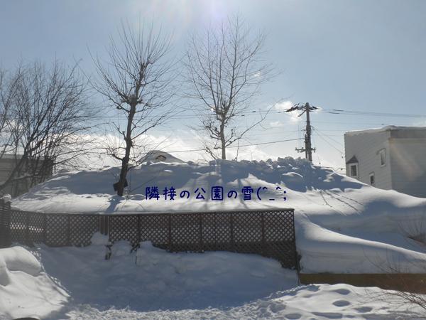 yuki2_20130223221657.jpg