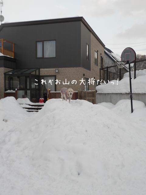yukiyama_20130101223506.jpg