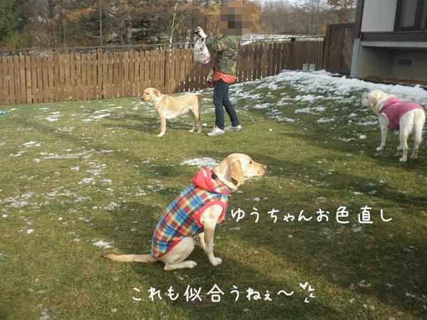 yuu_20121122214103.jpg