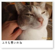 布絵雑貨職人テルミの日記帳-ユキさん