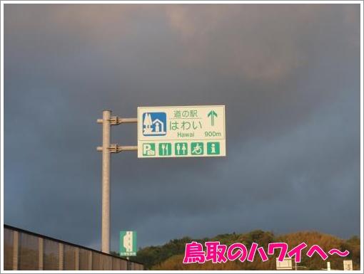 20120507_18.jpg