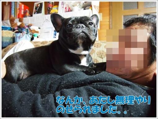 20121120_1.jpg