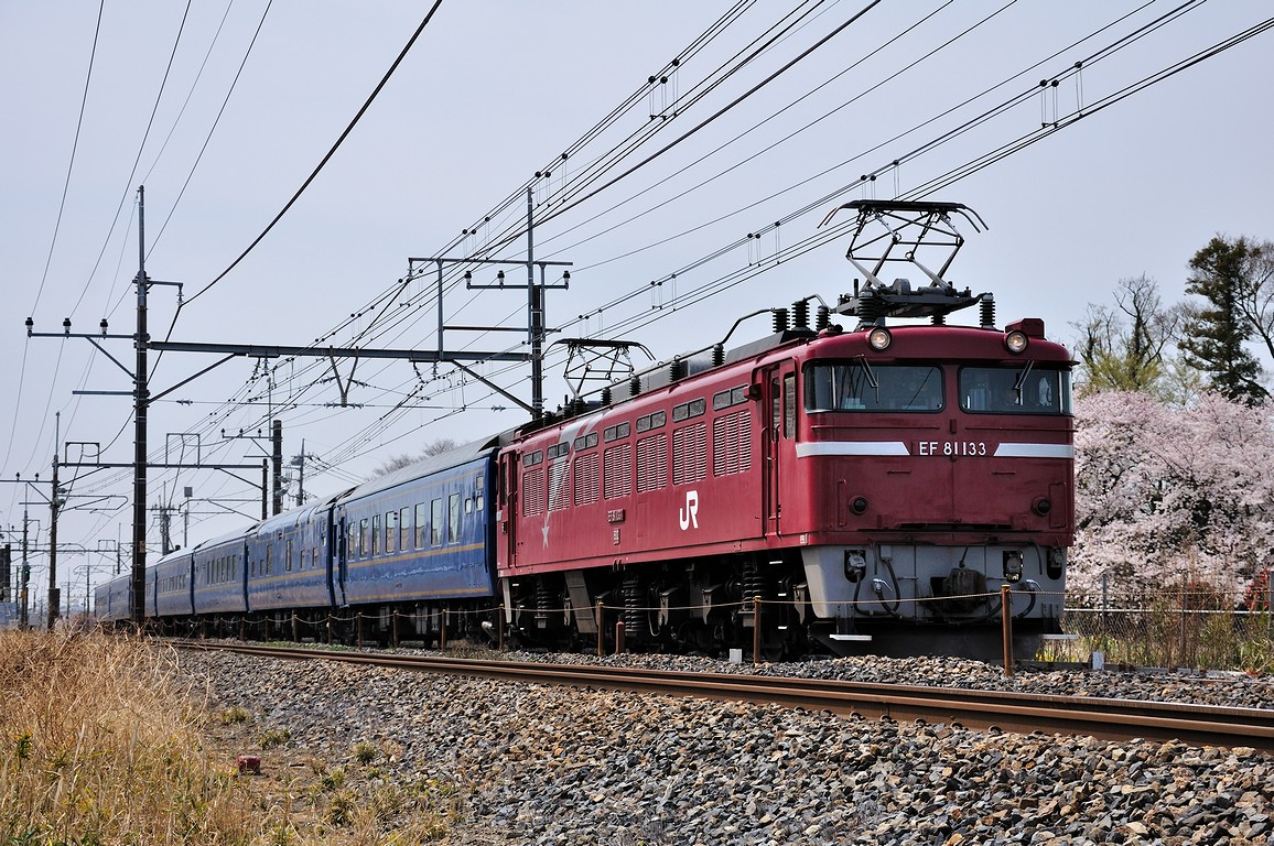 2012.04.10 1059_16(1) 東大宮~蓮田 試9501レ EF81 133+24系ts
