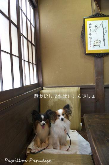 2012082614.jpg