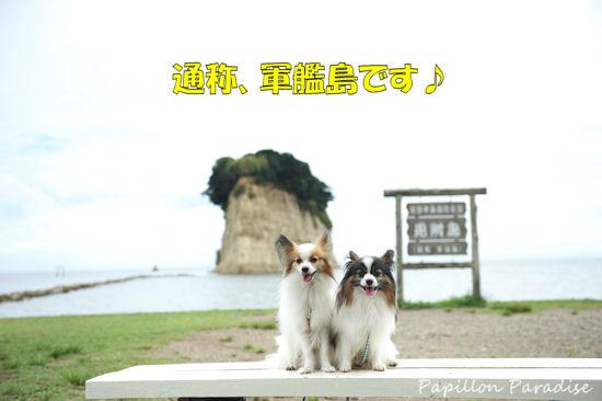 2012090414.jpg
