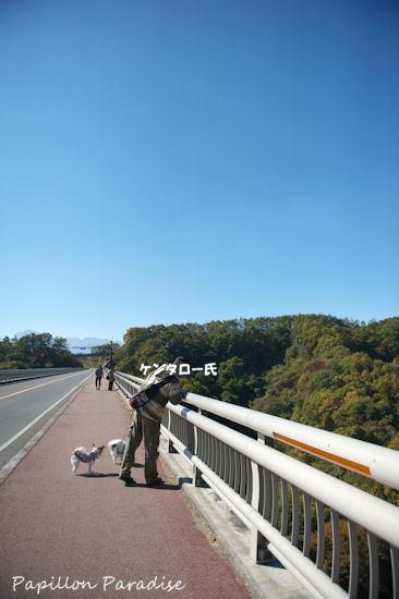 2012110306.jpg