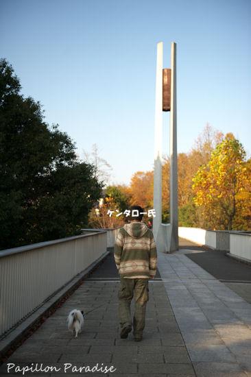 2012112403.jpg