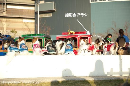 2012112526.jpg