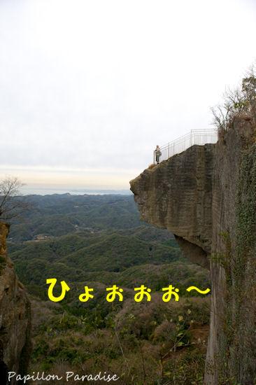2012122808.jpg