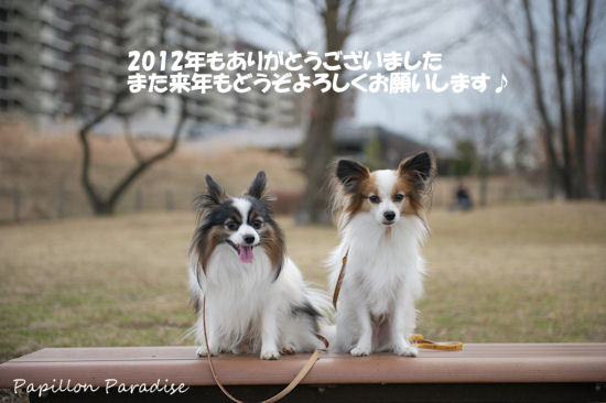 2012123103.jpg