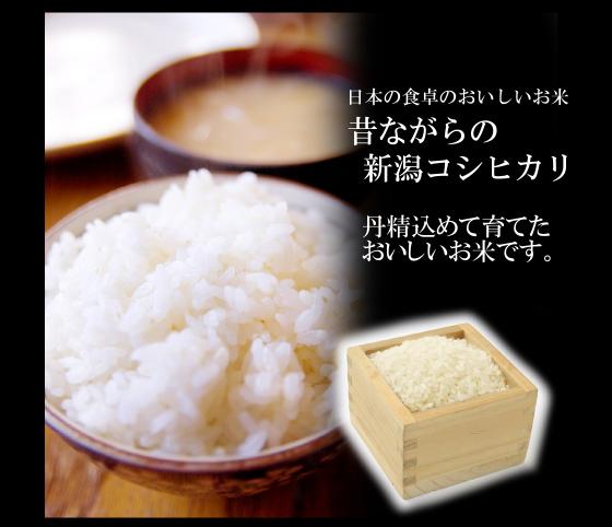 rice_01.jpg