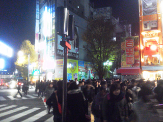 新宿ナイト