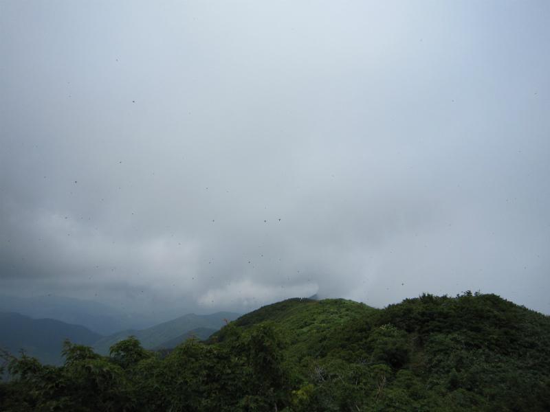禿岳 016