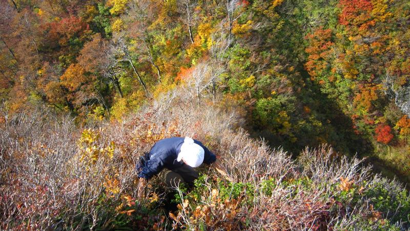 2012.10.27 摩耶山 035