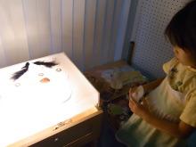ピアノ弾き語りシンガーソングライター松本佳奈のblog-光のテーブル