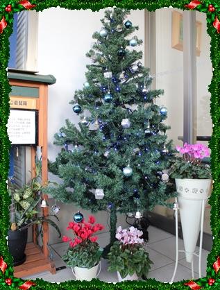 241119クリスマスツリー1
