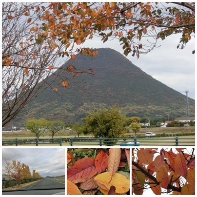 241124紅葉の讃岐富士