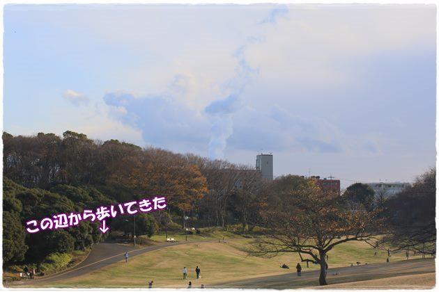 20141214-4.jpg