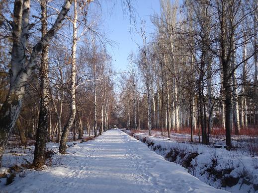 アタトルク公園雪化粧