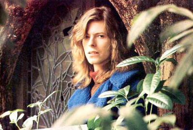 David Bowie beauty