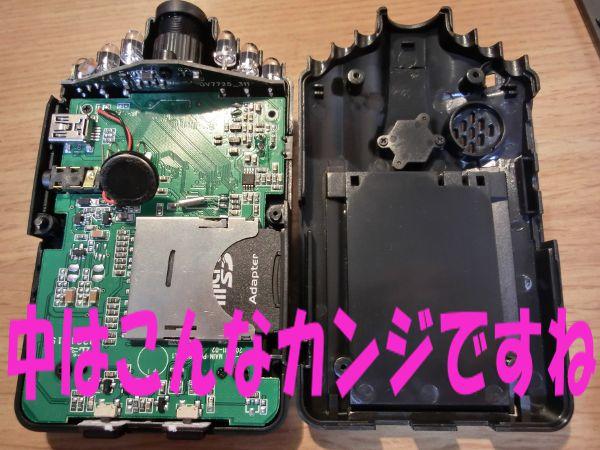 CIMG1801.jpg