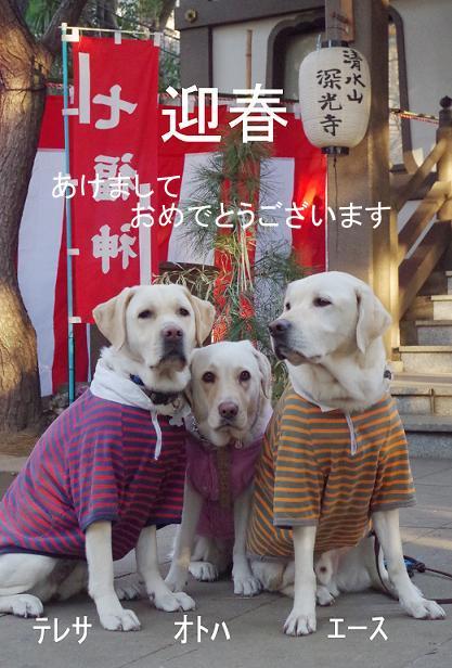 IMGP2141_0101f.jpg