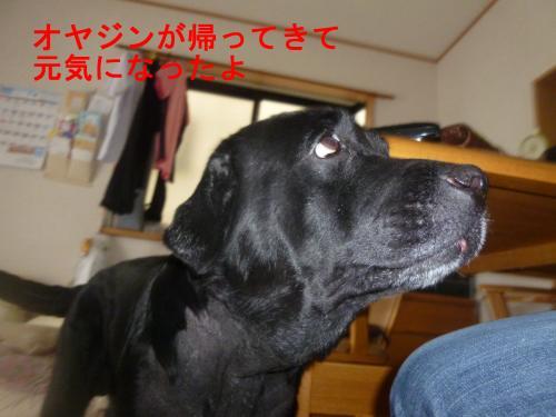 002_convert_20120707152409.jpg