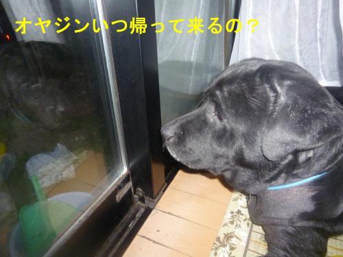 002_convert_20120707153526.jpg