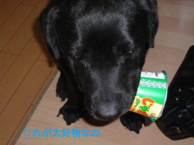 003_convert_20120505110614.jpg