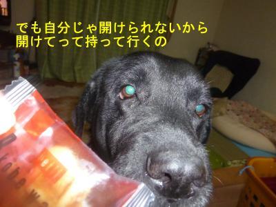 003_convert_20120512231324.jpg