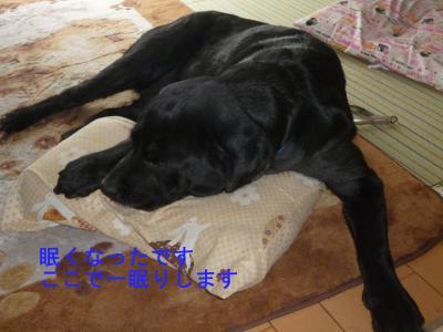 004_convert_20120506214044.jpg