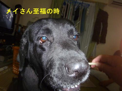 004_convert_20120713214315.jpg