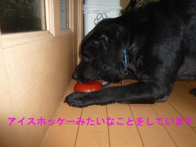 007_convert_20120504130605.jpg