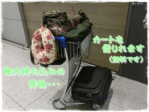 CIMG6162.jpg