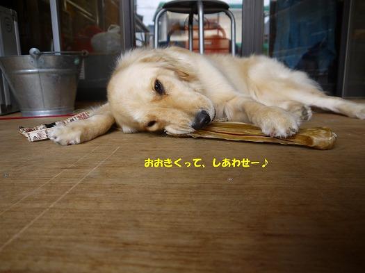 11_20120713222105.jpg