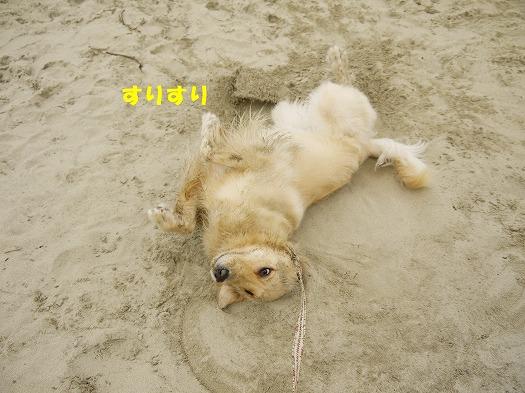 14_20120722203650.jpg