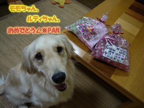 P1060831のコピー